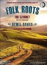 Hywel DAVIES : Folk rootspour