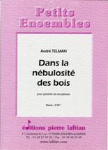 André TELMAN : Dans la nébulosité des bois